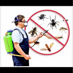 Удаление всех видов насекомых с лицензией.