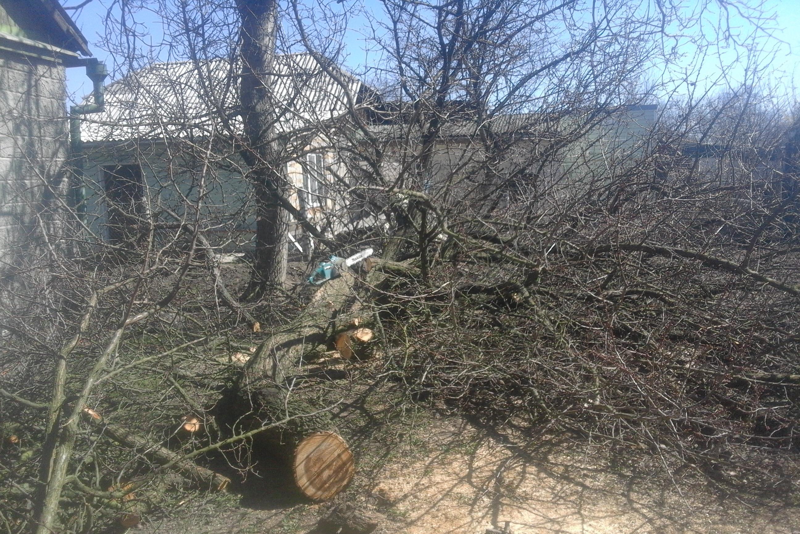 Фото Спил крупного дерева целиком и распил его на части. Инструмент электропила MAKITA