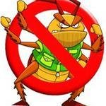 Знищення комах!!!!