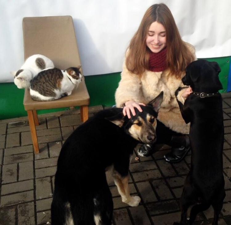 Фото Состою в фонде защиты животных . Не хотела прощаться с ними (