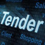 Подготовка тендерной документации для участия в процедуре публичных закупок