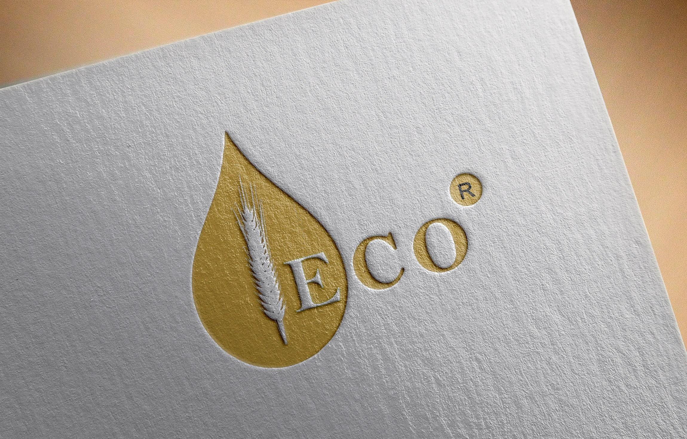 Фото Разработка логотипа 1