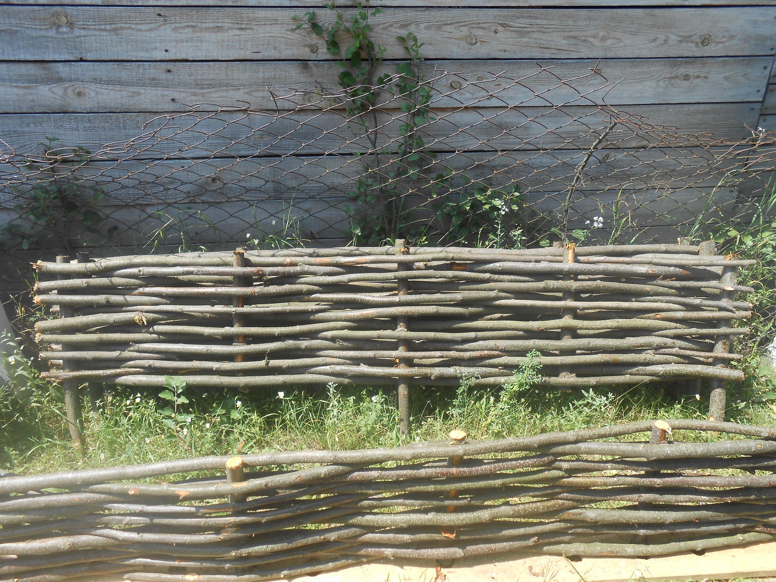 Фото Заборы из лозы. Украинский тын Український тин 1