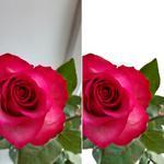 Качественно обработаю Ваши фотографии (цветокоррекция, ретушь, замена фона и т.д.)