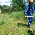 Покос травы, бурьяна и кустарников мотокосой,в  Запорожье и обл.