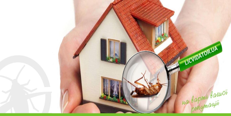 Фото Уничтожение тараканов 1