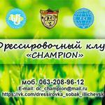 Обучение и Дрессировка собак в Одессе