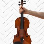 Разучу с вами песню на скрипке! (с начального уровня)