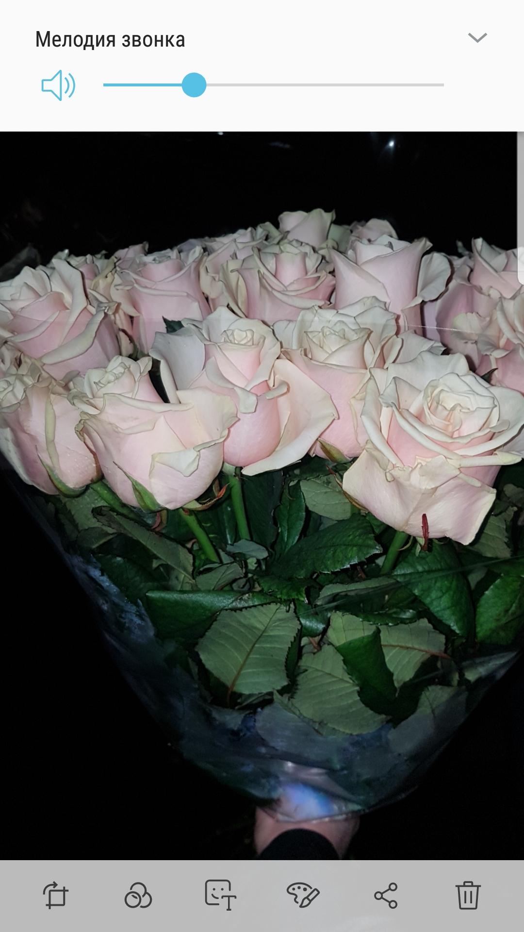 Фото Большой букет из 23 роз