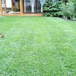 Подготовка газона(март-апрель)