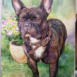 Портреты собак в технике акварельной живописи