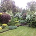 Озеленення участка Ландшафтний дизайн