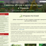 Верстка сайтов и посадка на Wordpress
