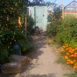 Ремонт и уход за домом и садои огородом