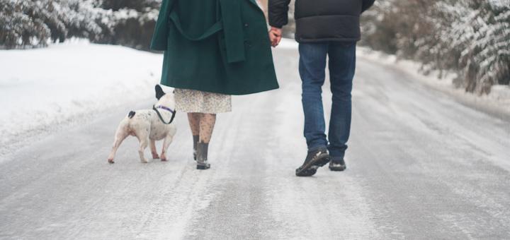 Фото Фотосъемка (семейная, love story), 2 часа + цветокоррекция