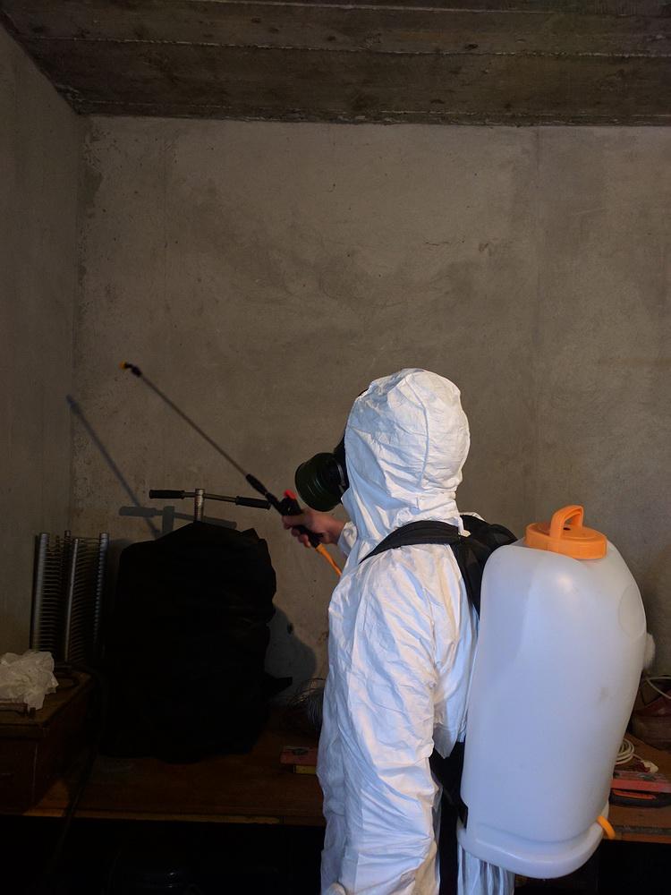 Фото Уничтожение плесени и грибка, дезинфекция помещений. 2