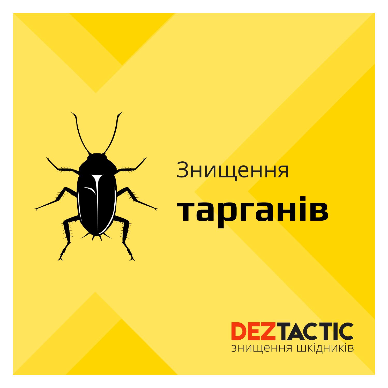 Фото DEZ Tactic: Профессиональное уничтожение насекомых 1