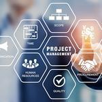 Проектна робота, Проектний менеджмент