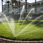 Автоматический полив газона, растений от компании Hunter
