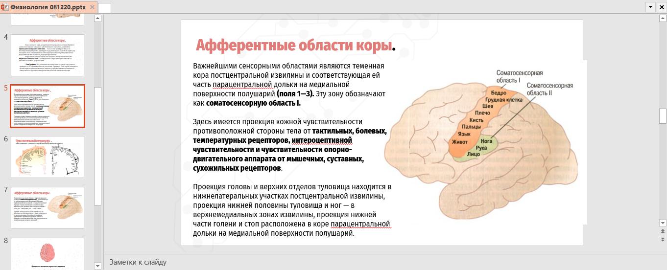 Фото Презентация на медицинскую тематику