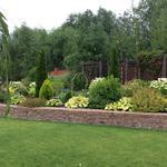 Озеленительные работы. Высадка растений. Создание газонов.
