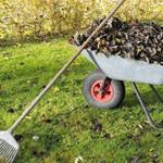 Планировка озеленение,выровнять отсыпка участка посадка деревьев травы