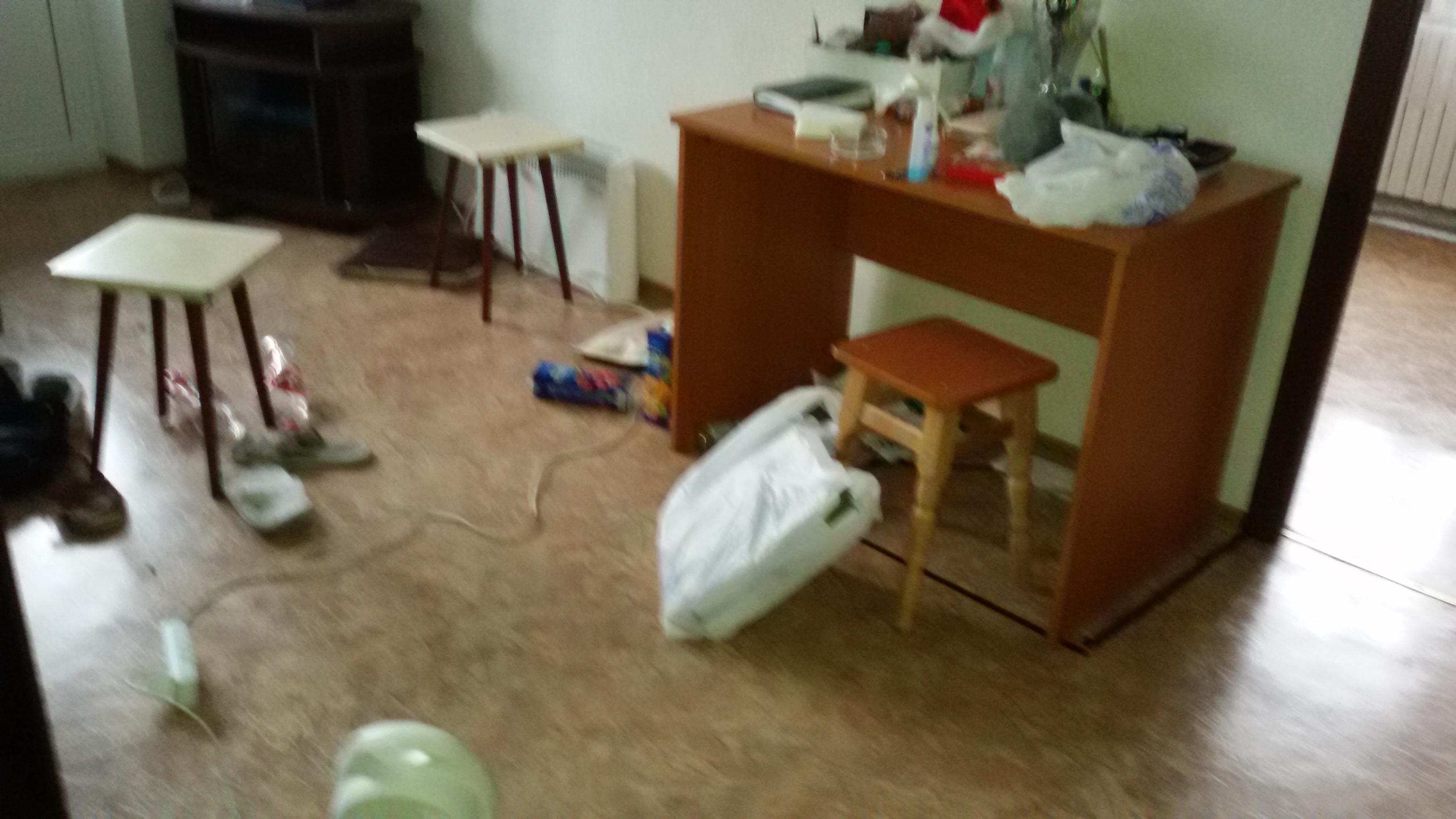 Фото Уборка квартиры (фото до)