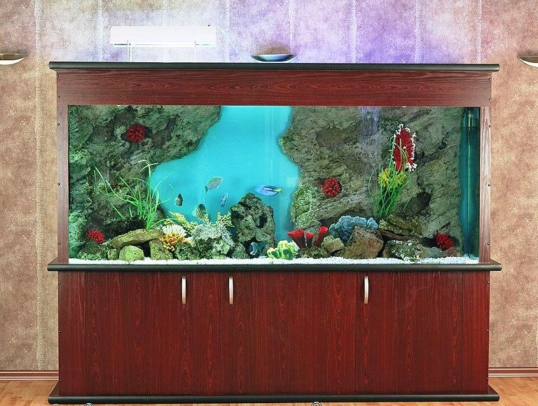 Фото Обслуживание, чистка, изготовление аквариумов 2