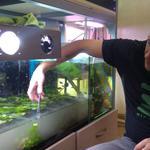 Изготовление  и уход за аквариумами