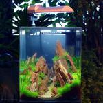 Читска аквариума