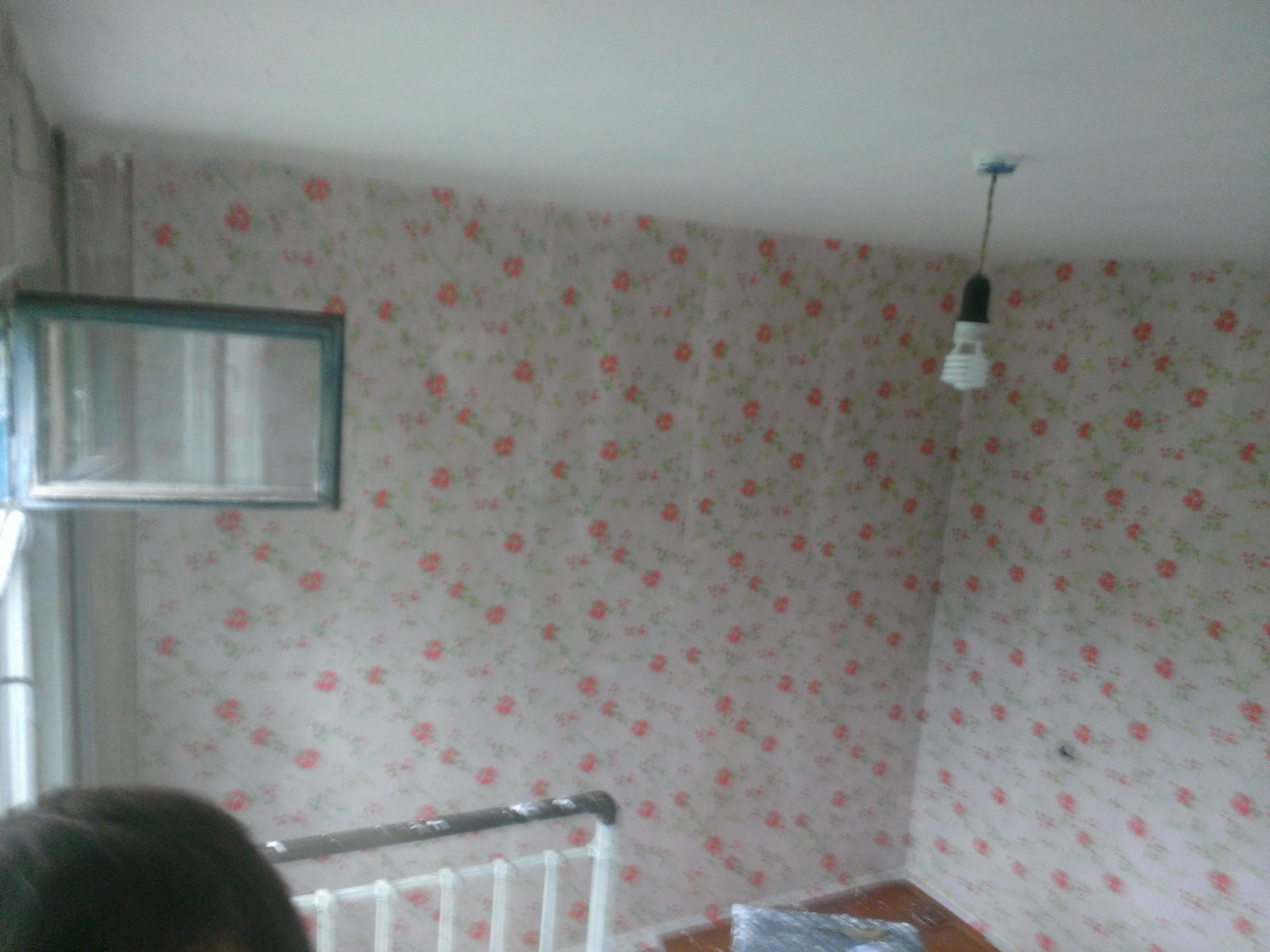 Фото Сделать косметический ремонт(покрасить потолок , окно, и поклеить обои)