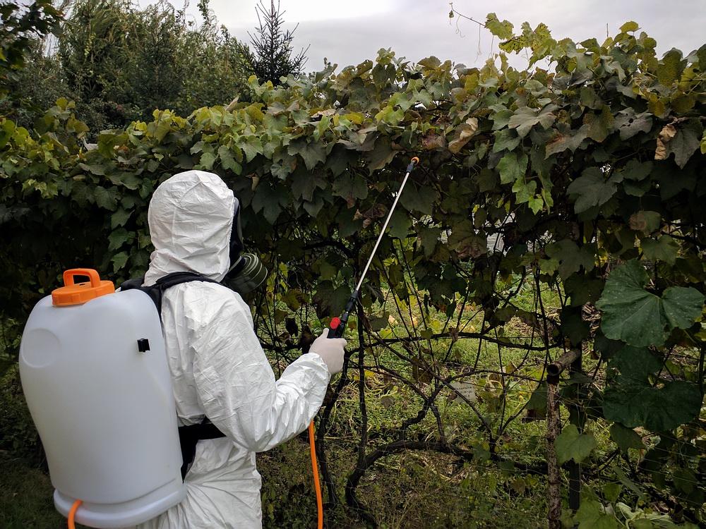 Фото Обприскування і обробка саду від шкідників. --- Опрыскивание и обработка сада от вредителей.