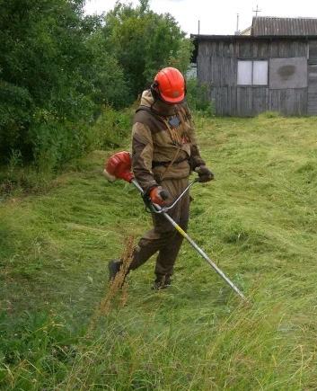 Фото Выкошу траву , сорняки , заросли любой растительности . Уборка . Вывоз. Обрежу ветки , срежу деревья . Очищу участок , могу до состояния устройства газона .
