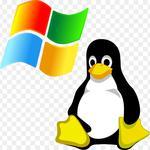 Установка серверов с ОС Windows, Linux, работа с виртуальными серверами
