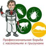 Обработка помещений от насекомых и грызунов