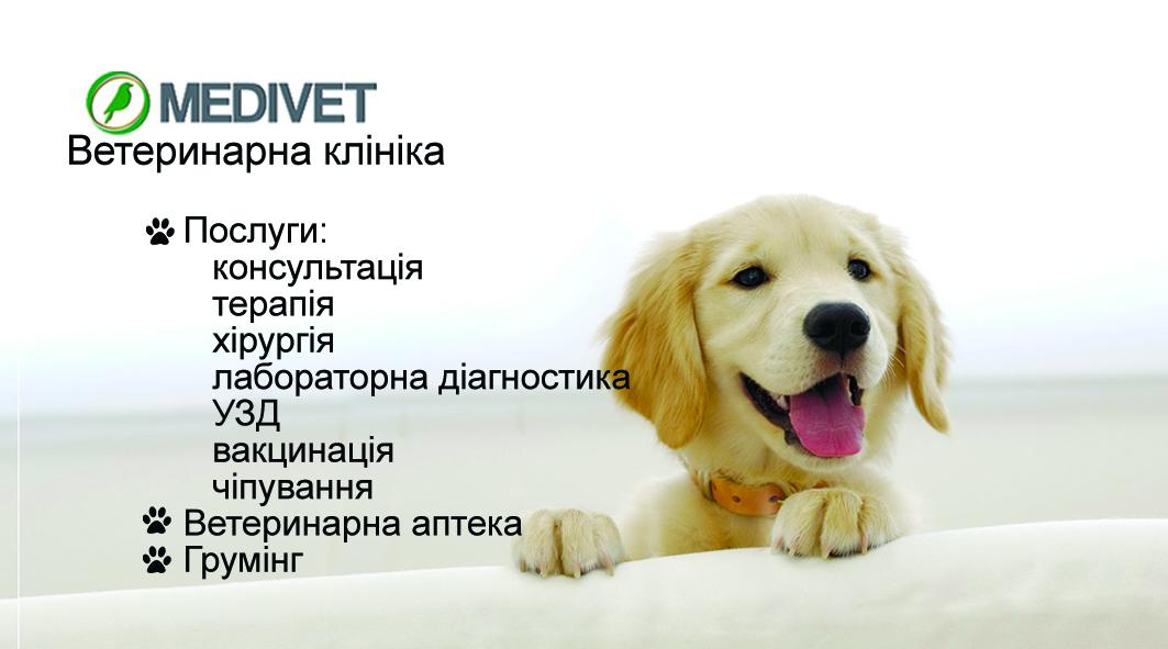 Фото Визитка для ветеринарной клиники