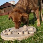 Прокат интеллектуальных игрушек для собак