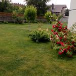 Услуги по уходу за садом