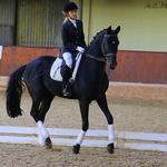 Инструктор по конному спорту, бирейтер.