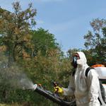 Помогу избавиться от тараканов, клопов или блох