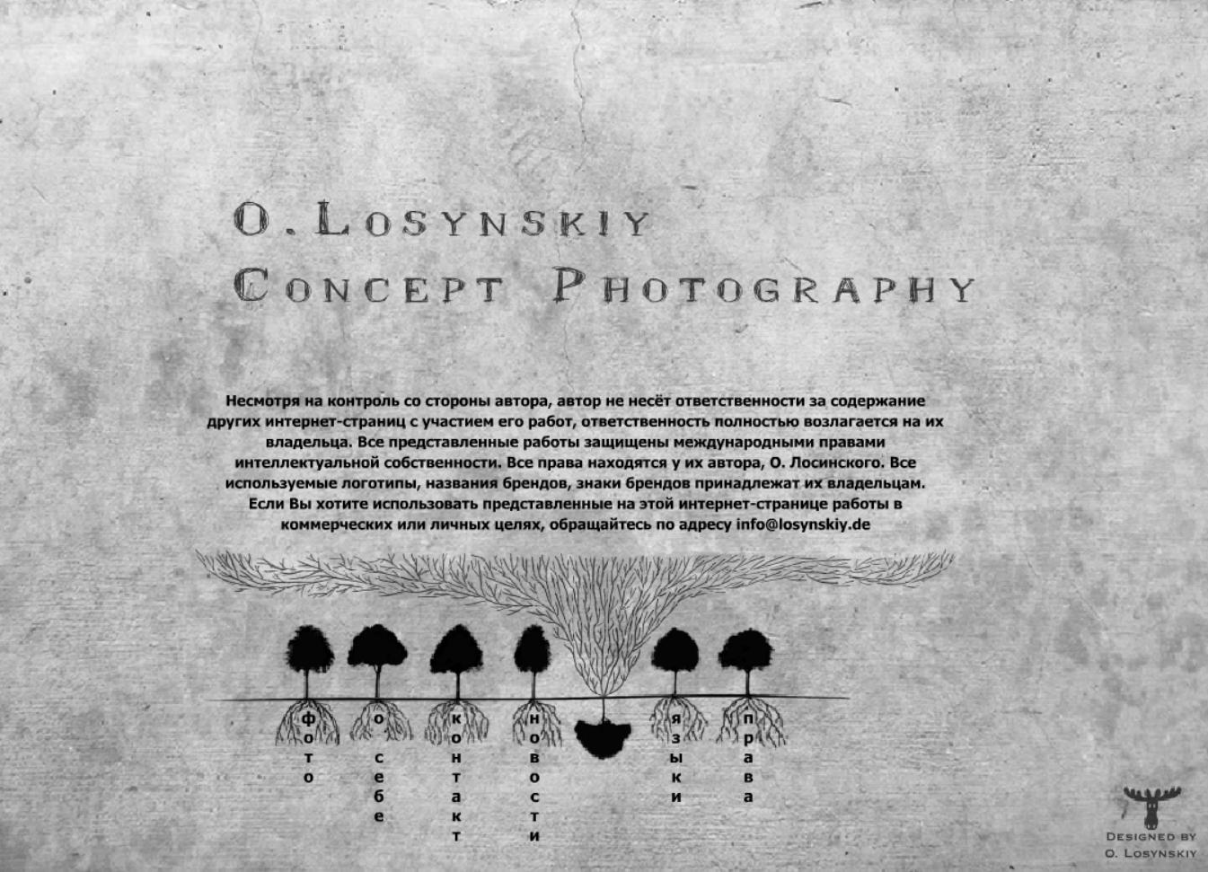 Фото Разработка сайта для Losynsky