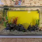 Обслуговування акваріумів