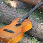 Научу быстро и качественно играть на гитаре.