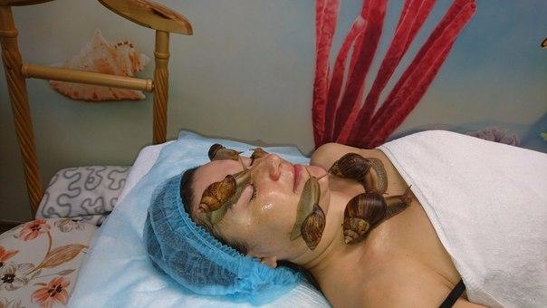 Фото Улиткотерапия на дому- массаж лица и тела улитками ахатинами 3