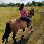 Психотерапия с лошадью для взрослых