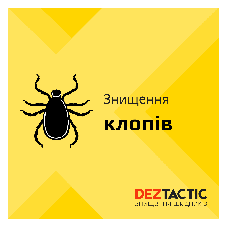 Фото DEZ Tactic: Профессиональное уничтожение насекомых 2
