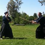 Уникальная возможность изучения традиционных школ боевых искусств Японии.