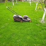 Покос травы газонокосилкой.
