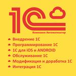 Комплексное обслуживание программ 1С . Услуги программиста 1с.
