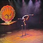Спортивная гимнастика от проф. циркового артиста